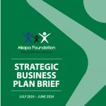 BMF Strategic Business Plan Brief